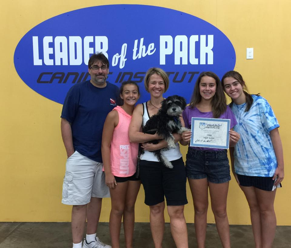 Cooper's Dog Training Certificate in Bethlehem, PA