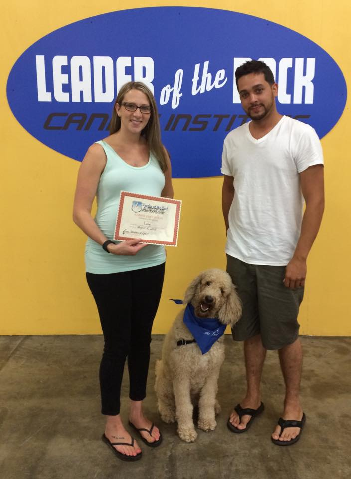 Lola's Dog Training Certificate in Easton, PA